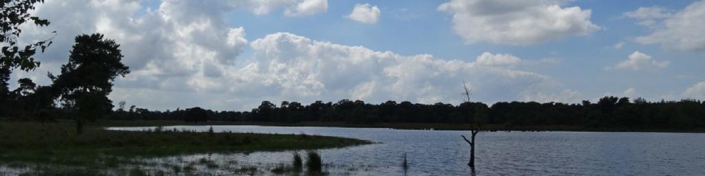 Wandelen in Noord-Brabant