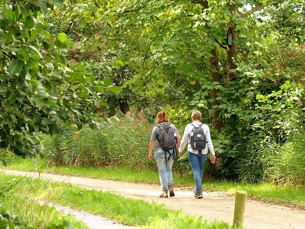 Noardlike Fryske Wâldenpad - wandelen