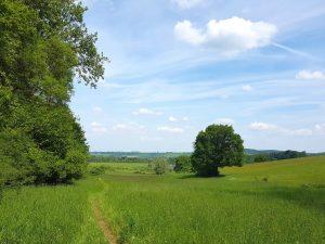 Mooiste Wandelingen Zuid-Limburg