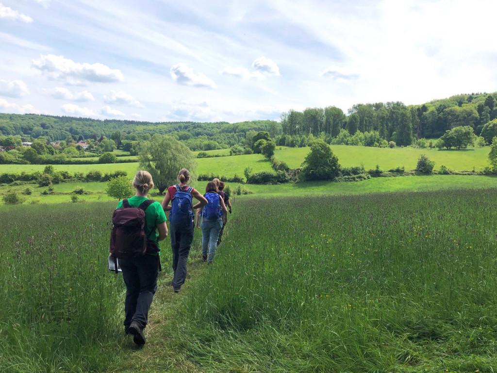 Wandelingen Zuid-Limburg Vaalserberg met uitzicht over het glooiende landschap